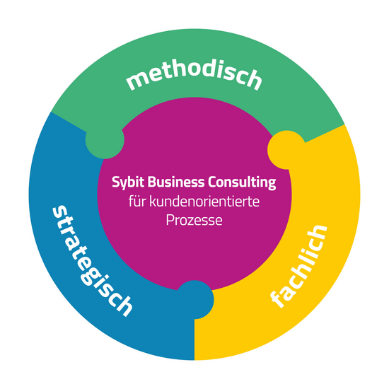 Sybit Business Consulting Kreisdiagramm